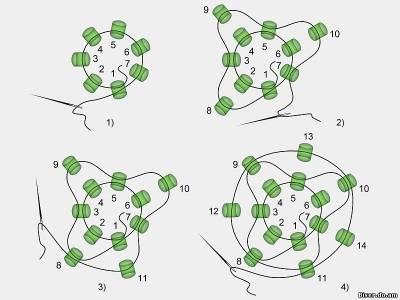 схема жгута на 7 бисерин,